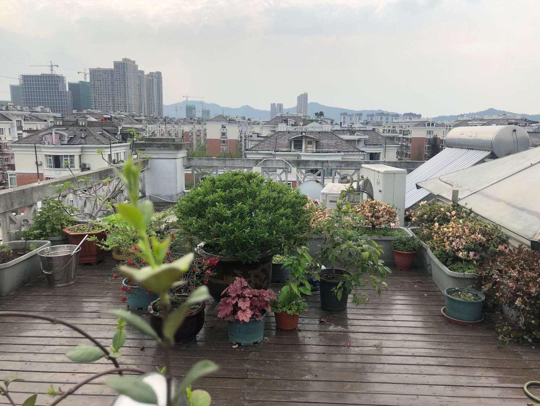 泰和花園稀缺空中別墅、買一層享三層雙高橋學區!